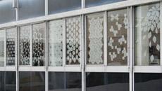 Fensterdekoration Gecko - Coleo